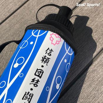 日本体育大学バレーボール部