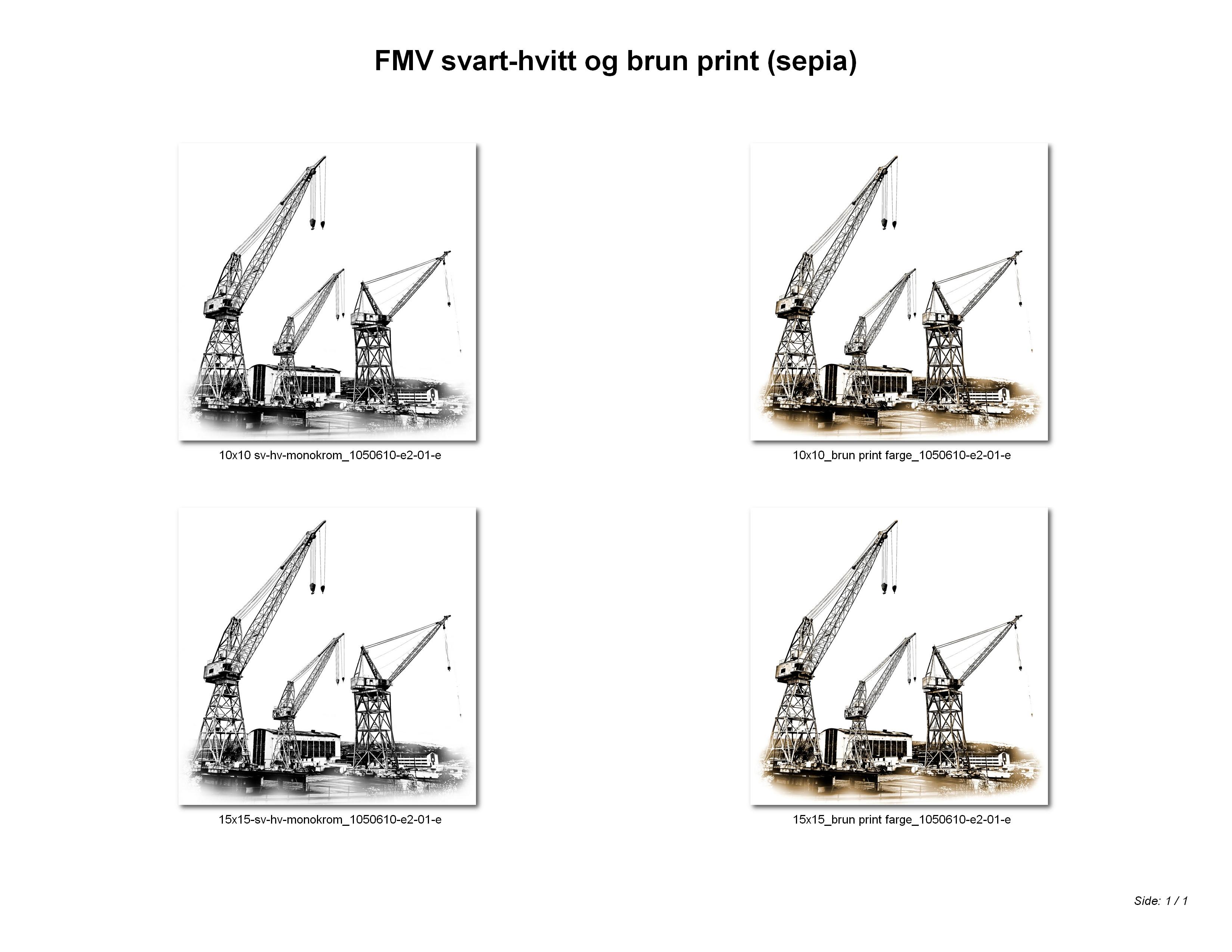 FMV svart-hvitt og brun print (sepia)