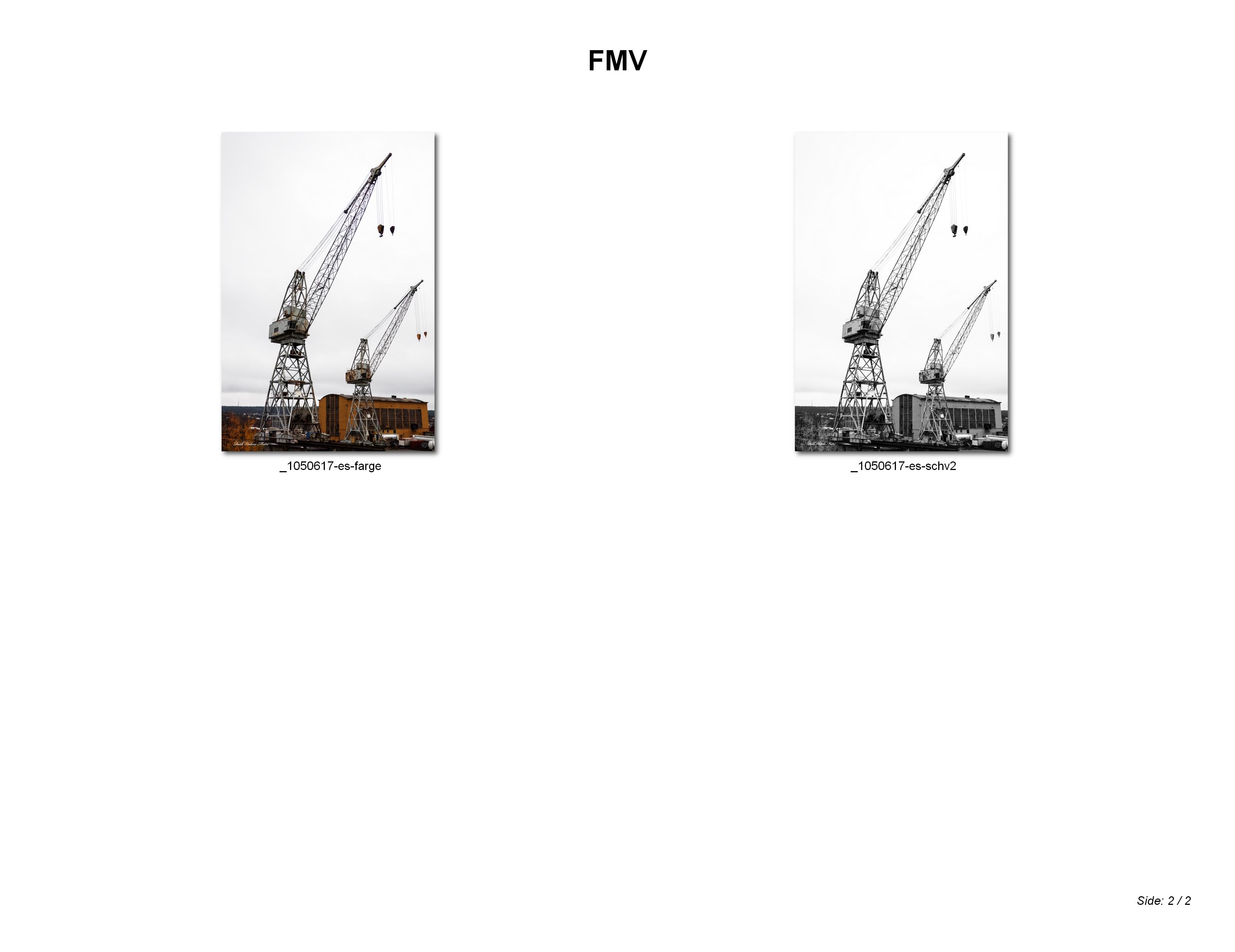 FMV_002