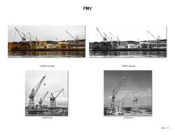 FMV_001