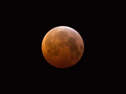 Jagten på blodmånen