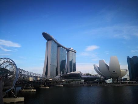 #45 Die bekannte Skyline von Singapur