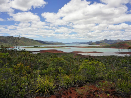 #73 Rote Erde, blaues Wasser, grüne Bäume