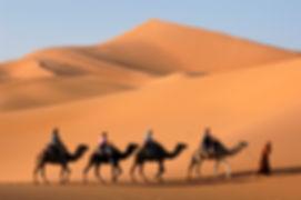 Africa_Homepage_pict.jpg
