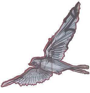 lisbon bird 3.jpg