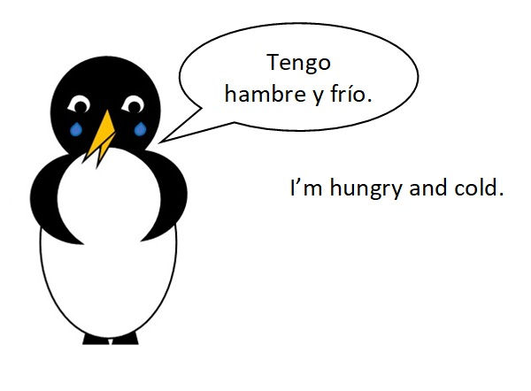 2A - pinguino 1.jpg