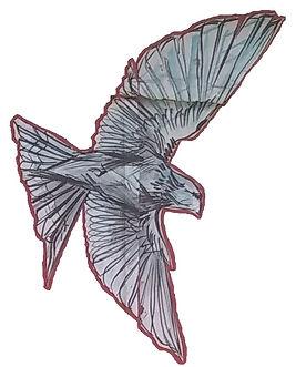 lisbon bird 2.jpg