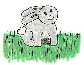 Rabbit for website.jpg