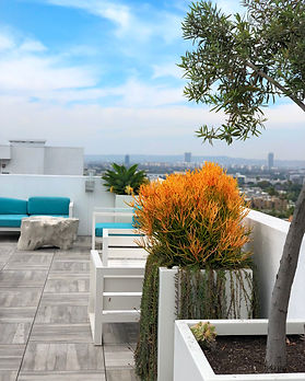 Hollywood-Penthouse-terrace3.JPG