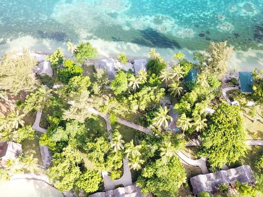 Det otippade paradiset, Vanuatu