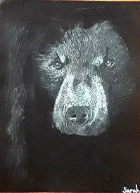 Art_bear_Sarah.jpg