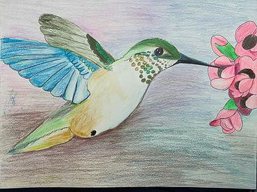 Art_Bird.jpg