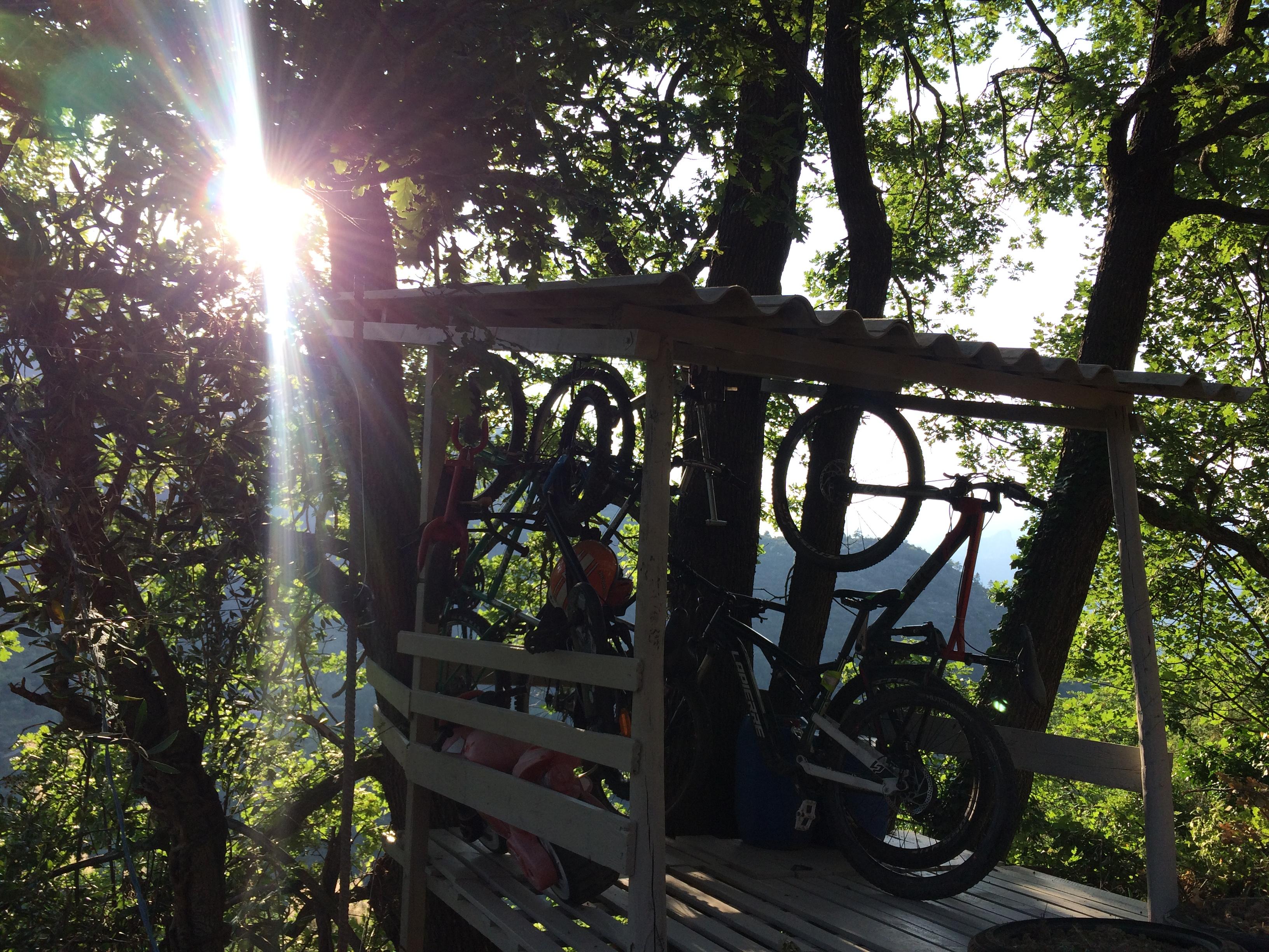 Abri vélo dans le jardin