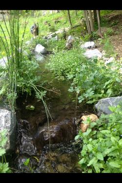 Nouveau cours d'eau