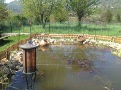 Bassin naturel