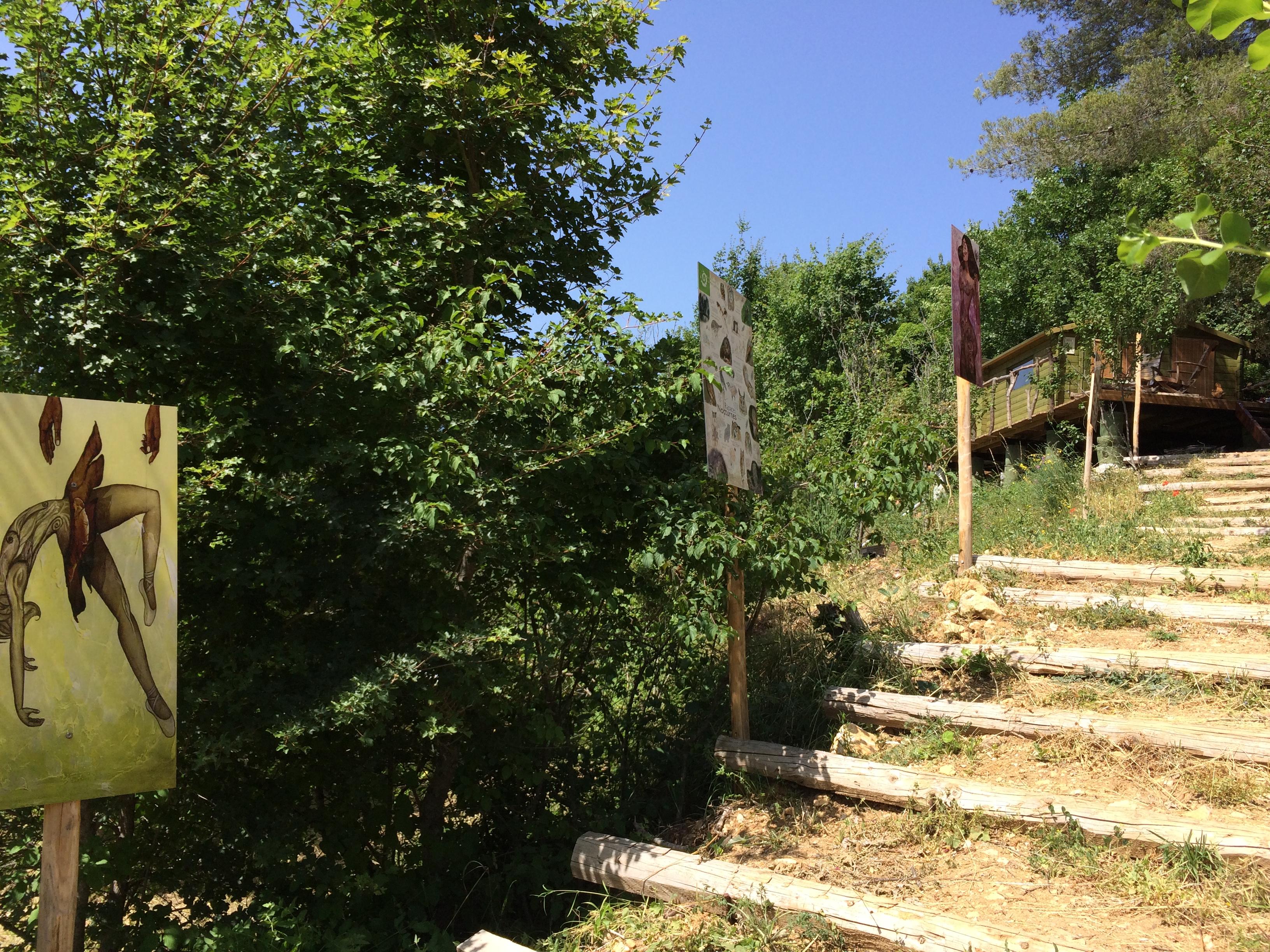 Le chemin qui mène à la cabane