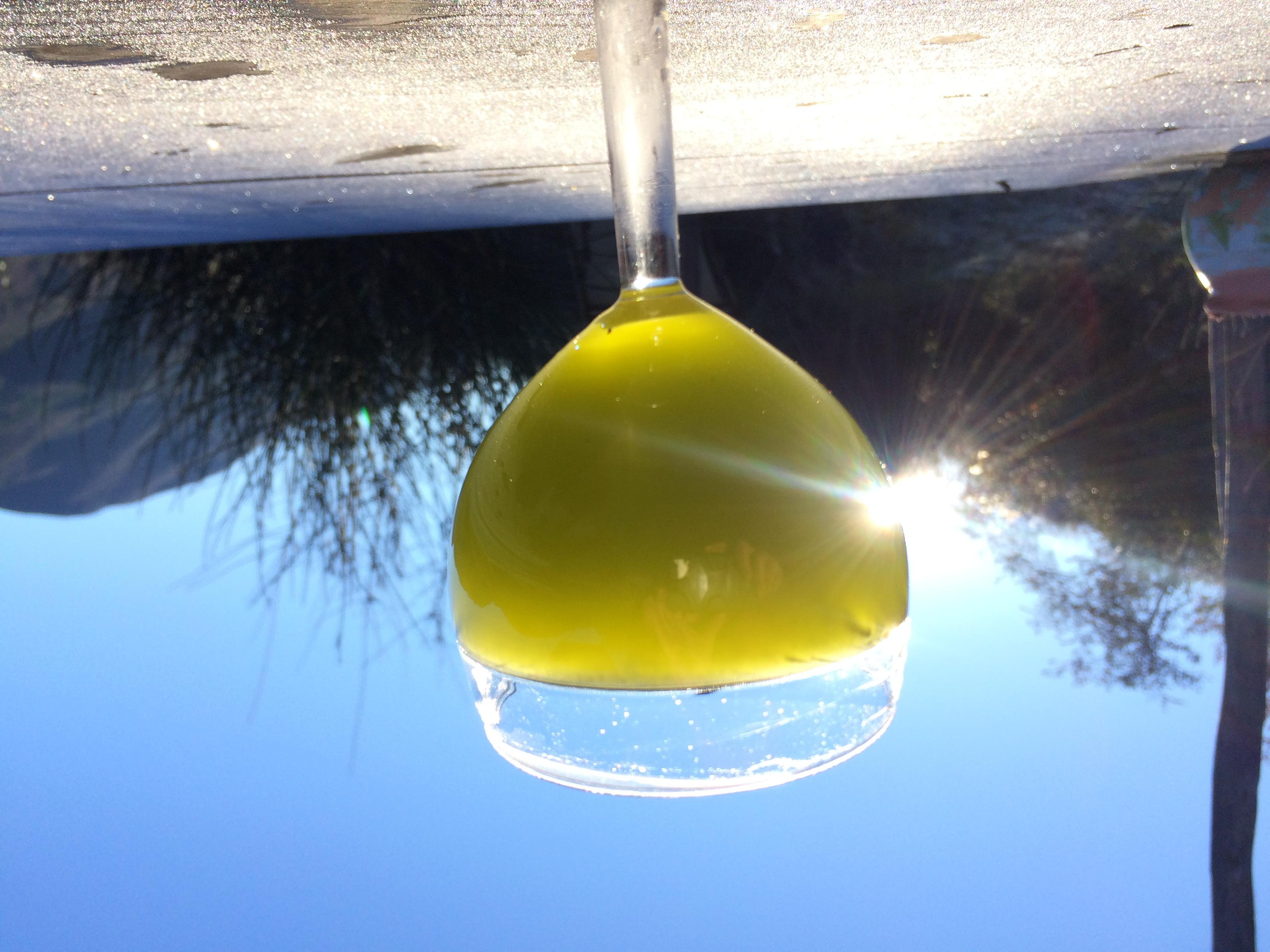 Notre huile d'olive cru 2019