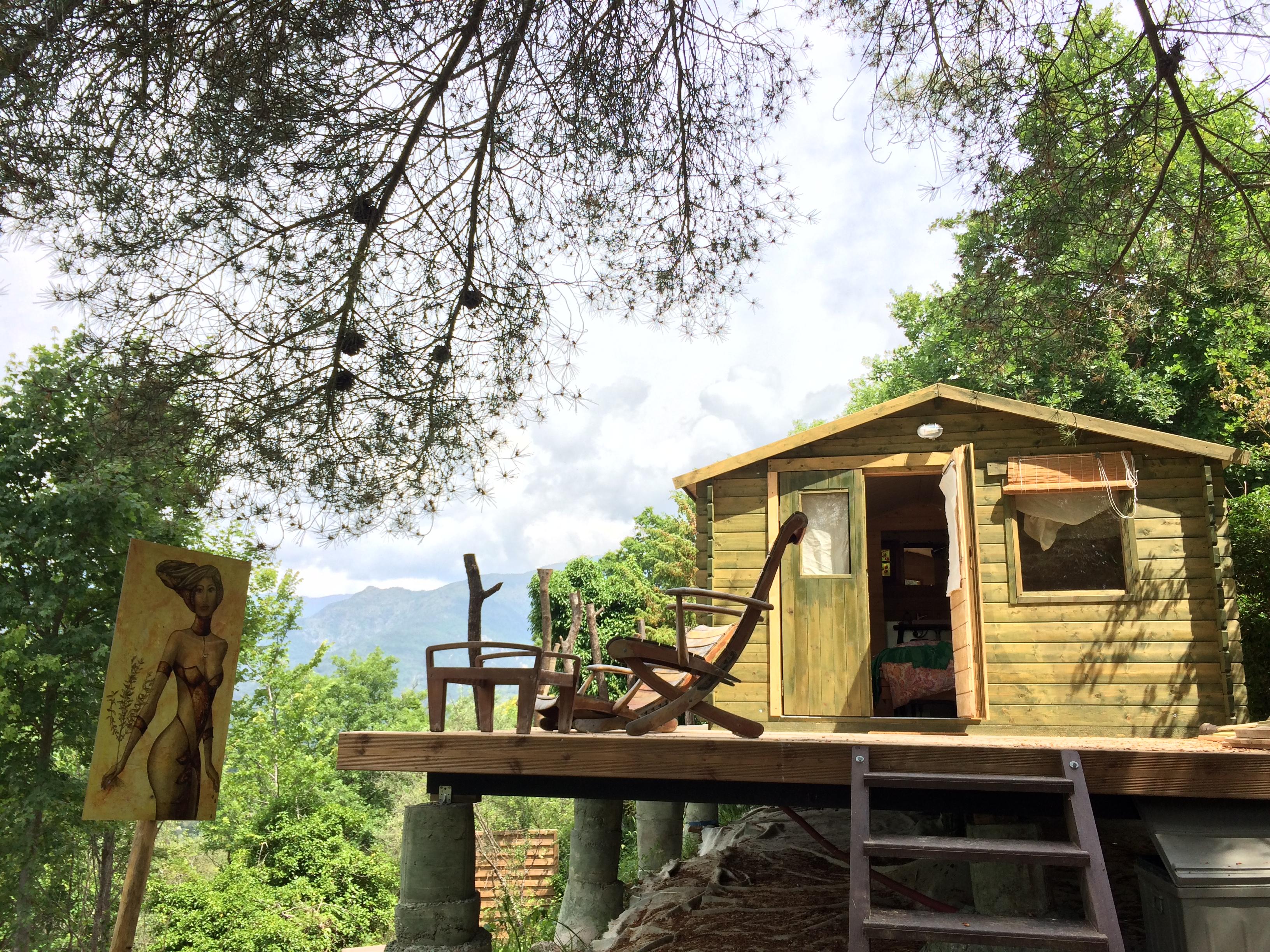 La vue de la cabane depuis les bois