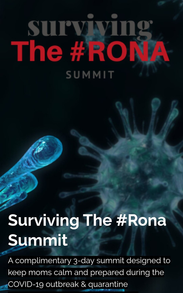 Surviving The Rona Summit