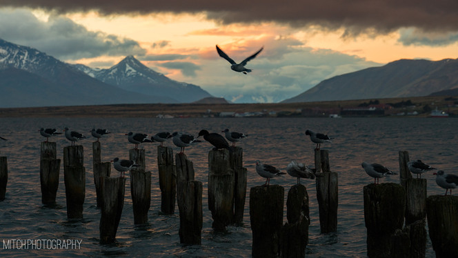 2018 - Chile - Puerto Natales