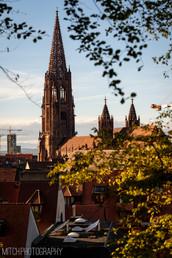 2018 - Germany - Freiburg