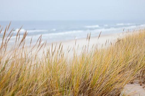 dunes-1936086_1920.jpg