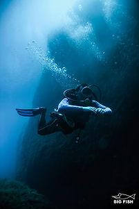 maltabigfish3.jpg