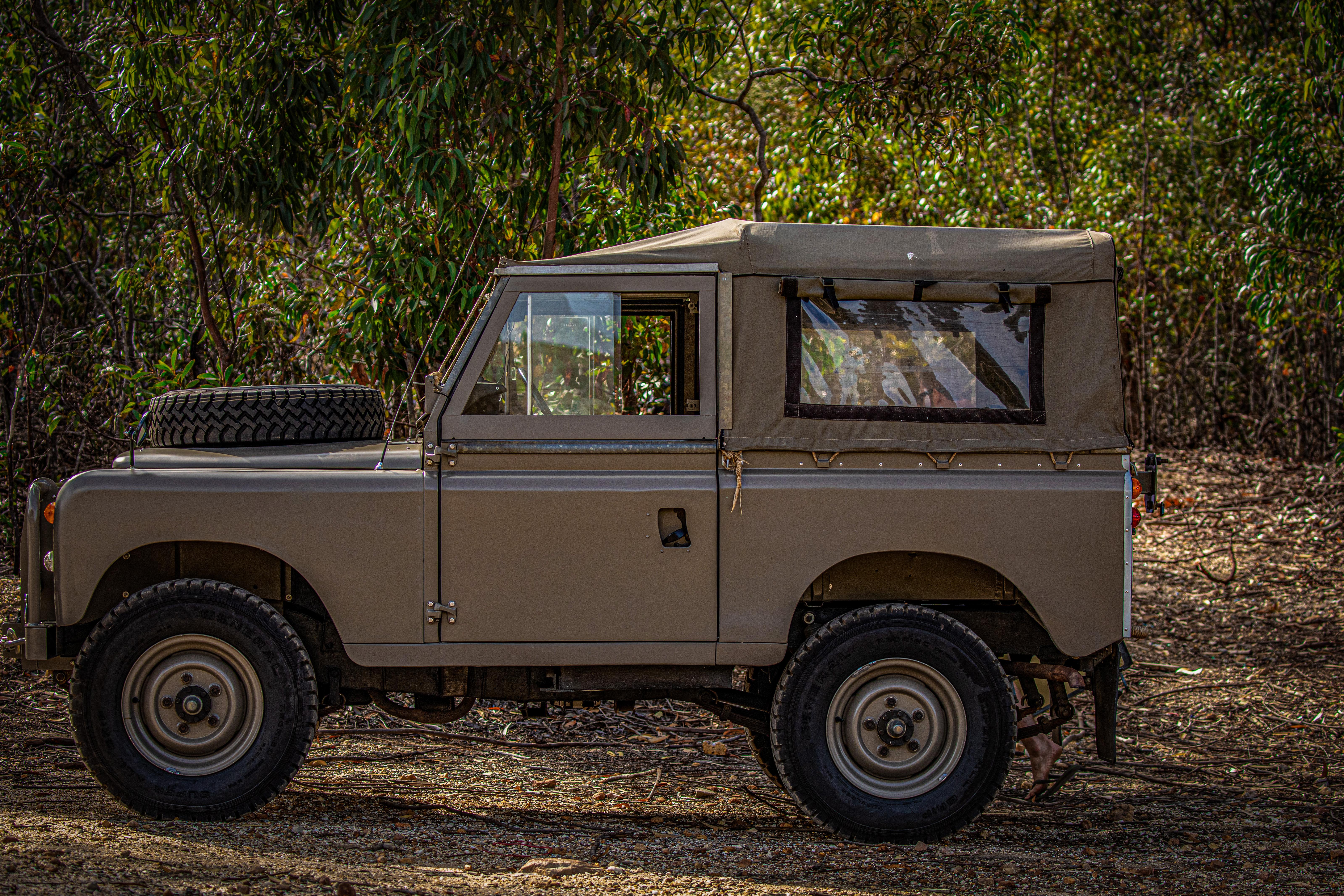 """88"""" Series III, Safari"""