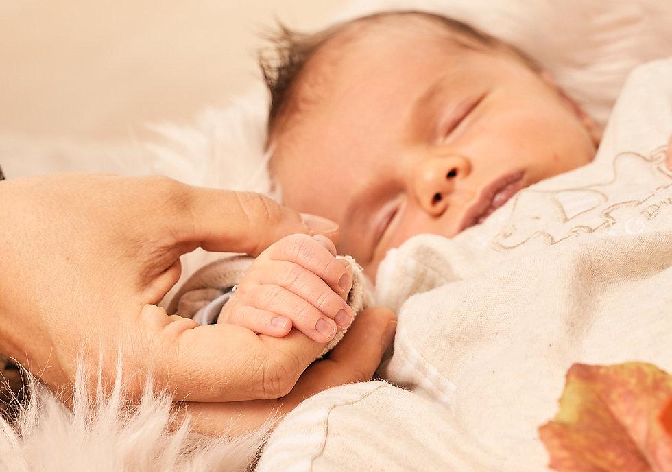 Babyfotograf-Dresden-Babybilder-0053.jpg