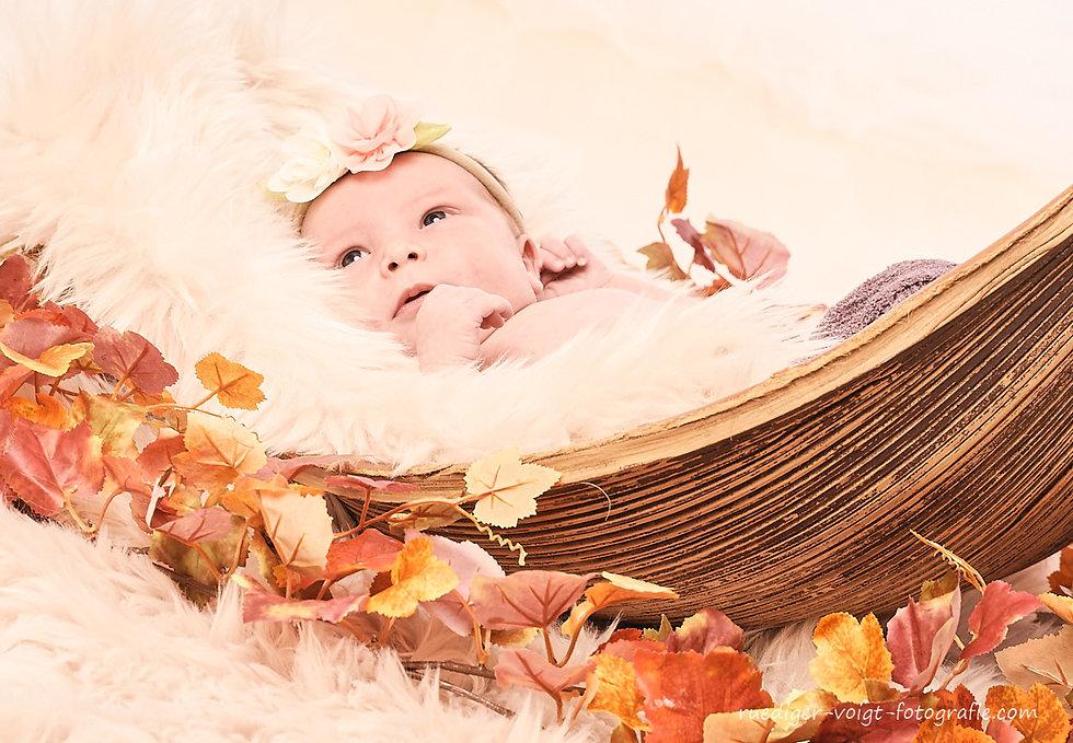 Baby-Fotografie-Dresden-Kinderfotografie