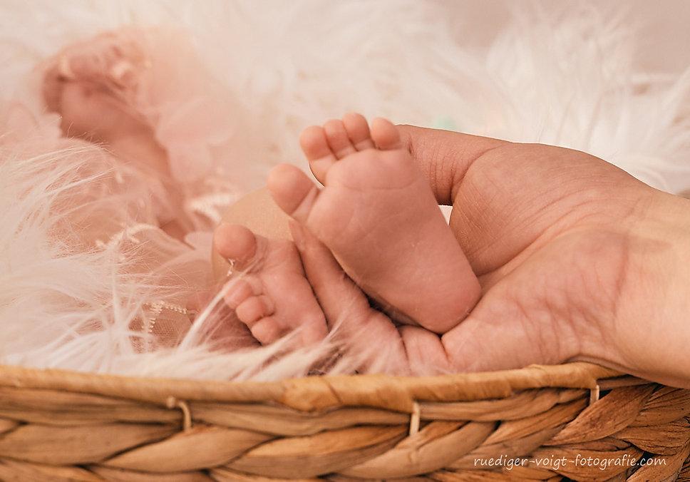 Babyfotografie Babyfotograf Kinderfotografie Dresden Rüdiger Voigt