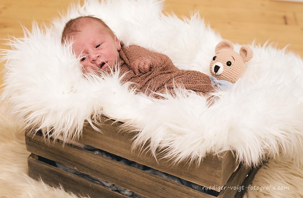 Rüdiger Voigt Babyfotograf Newborn Babyfotos Babyfotografie in Dresden