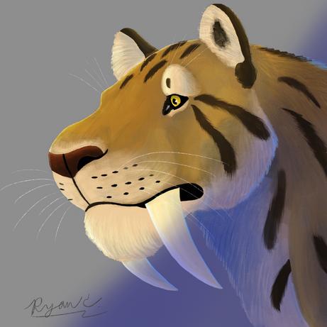 Smilodon Portrait