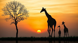 wts-africa-do-sul-fauna-e-flora.jpg