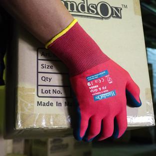 General Purpose Glove