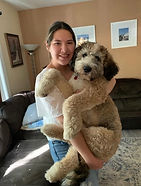 Bernedoodle Puppies for Sale in Kansas