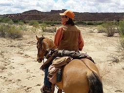 Carter Reservoir HMA, wild stallion, mustang, wild horse