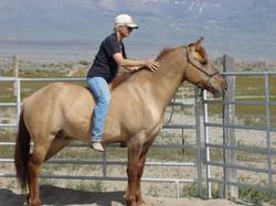 Darice-Red Ryder Carter Mustang