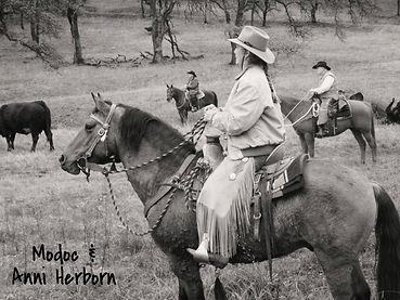 adopted branded carter reservoir mustang, wild horse, carter reservoir HMA