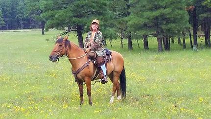 branded mustang, carter reservoir hma, branded carter reservoir wild horses