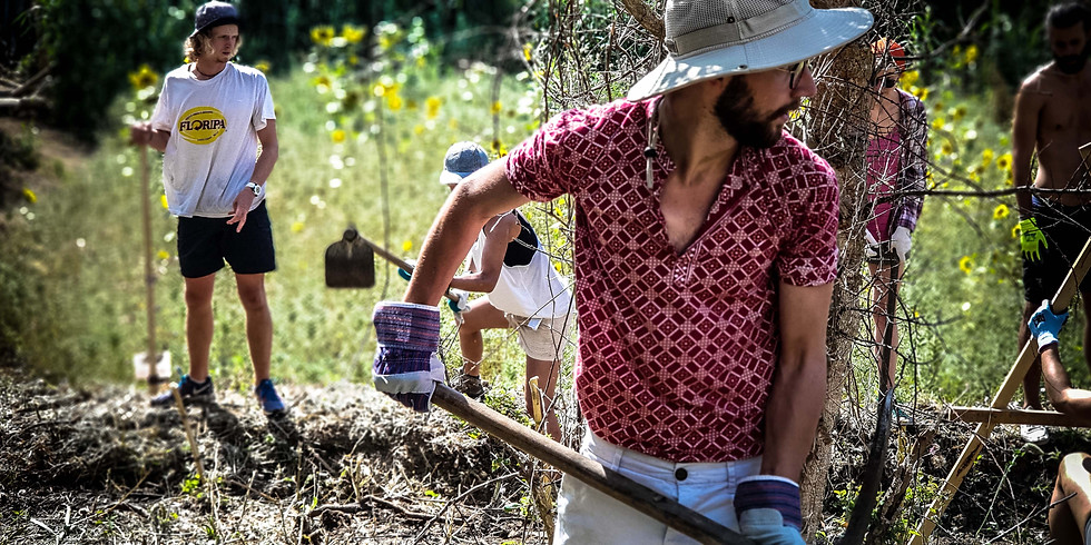 Permaculture Design Course - August