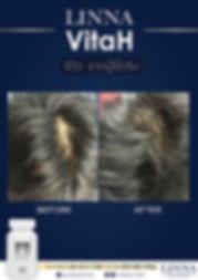 vitah-02.jpg