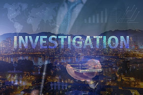 New Data Risk Solutions & Investigations