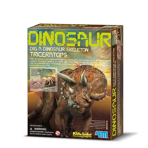 Scava un fossile di triceratopo