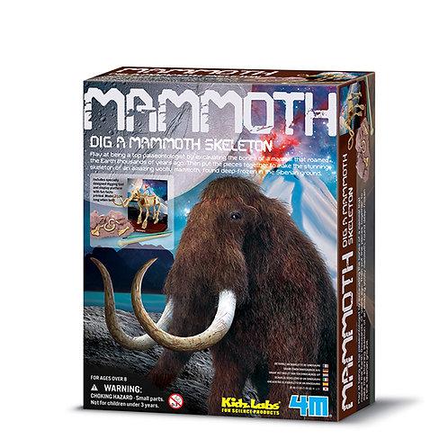 Scava un fossile di Mammut