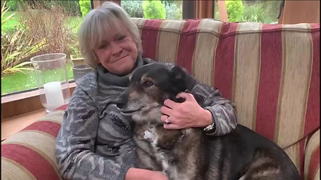 Watch Sue and Batty and learn about sponsoring a shelter dog!