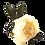 Thumbnail: Porta guardanapo peônia