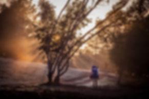 תמונה: טיולי שטח - שביל ישראלי |  מאתר:  ארץ עיר טיולים |  יום כיף | ODT | טיולים בצפון | הפקת אירועים