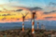 תמונה: טורבינות רוח בגולן |  מאתר: ארץ עיר טיולים |  יום כיף | ODT | טיולים בצפון | הפקת אירועים