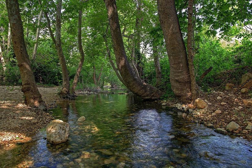 תמונה: כזיב - פינת שלווה ורוגע בנחל כזיב |  מאתר:  ארץ עיר טיולים |  יום כיף | ODT | טיולים בצפון | הפקת אירועים